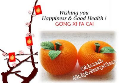 new year traditions mandarin oranges diy your mandarin oranges this new year