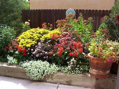 fiori da giardino foto fiori estivi da giardino fotogallery donnaclick