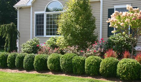 landscaping photos home tarantino s landscaping inc bridgeport ct