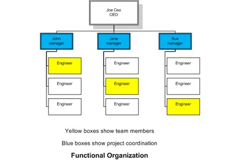 organisation chart of a functional organisation