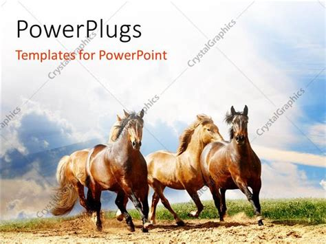 powerpoint templates free download horse powerpoint template a number of horses running with
