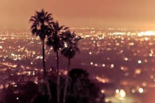 Lights In La by City Lights Los Angeles Palm Trees Twinkling Lights Lfand101