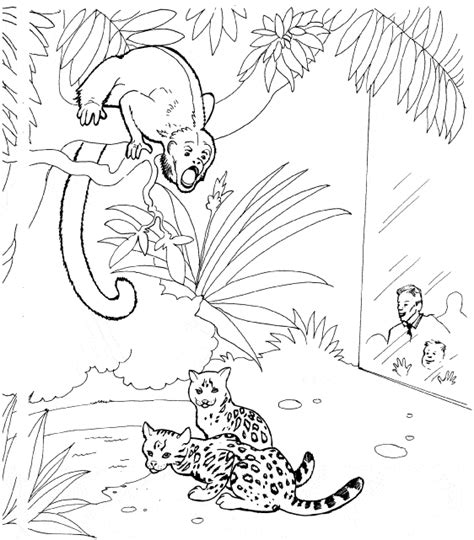 howler monkey coloring page howler monkey coloring page animals town free black