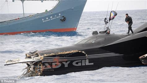 whale wars boats whale wars reality star sued after he secretly sunk boat