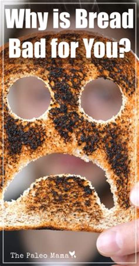 is bread bad for dogs 1000 images about the dangers of gluten on gluten gluten intolerance and