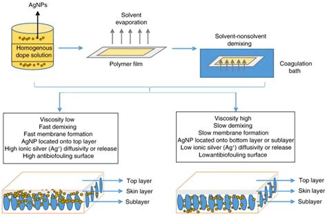 membranes free text treatment of membranes free text progress of nanocomposite membranes for water treatment html