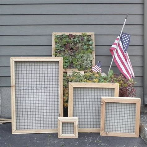 Vertical Wall Garden Kit Succulent Vertical Living Wall Kit 12 Inch By
