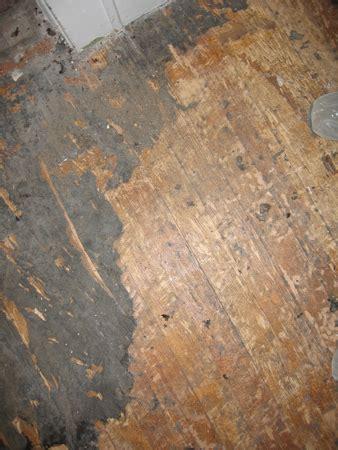 Vinyl Flooring Dangers by Asbestos Mastic Dangers