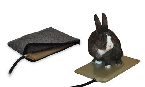 small animal heat l pad for small animals groupon goods