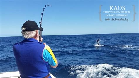 Kaos Fishing 10 after lizard there still be 187 black marlin