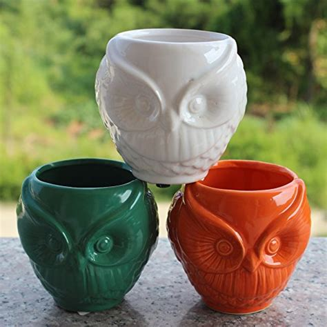 10 Ceramic Flower Pot by 10 Owl Planters And Flower Pots