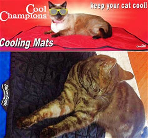 Cooling Mat For Cats by Animal Cooling Products Cool Chions