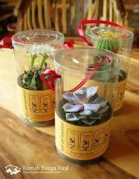 Mini Pot Bunga Hias Kaktus Tanaman 5pcs 1000 images about green idea on souvenirs green weddings and bali