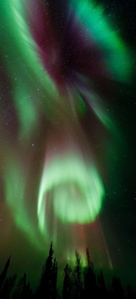 northern lights from space 162563 best images about a beautiful world on