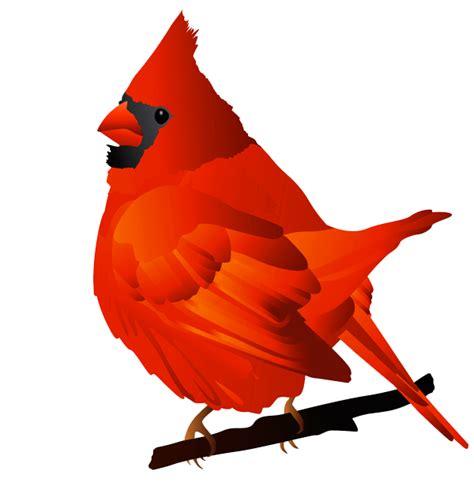 cardinal clip cardinal bird clipart clipart best