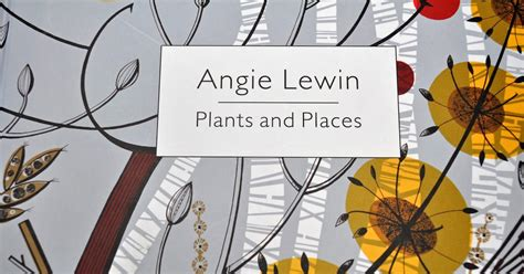 angie lewin plants and 1858945364 playing in the attic angie lewin