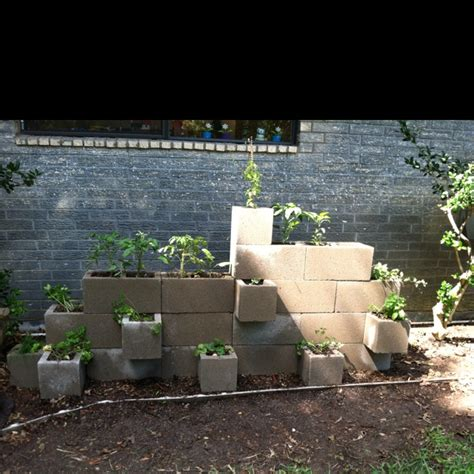 Cinder Block Wall Planter by Concrete Block Wall Planter For The Home