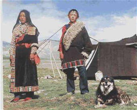 wann wurde tibet buddhistisch hirtenhundewelt de centralasien do khyi