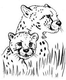 cheetah coloring pages 9 coloring