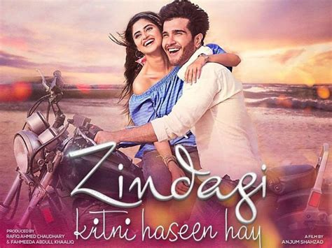 biography of movie pk zindagi kitni haseen hai 2016 full movie pakistan cinema