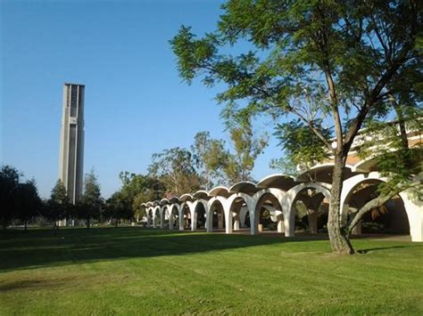 Uc Riverside Mba Admission by Department Of Political Science Political Science At Uc