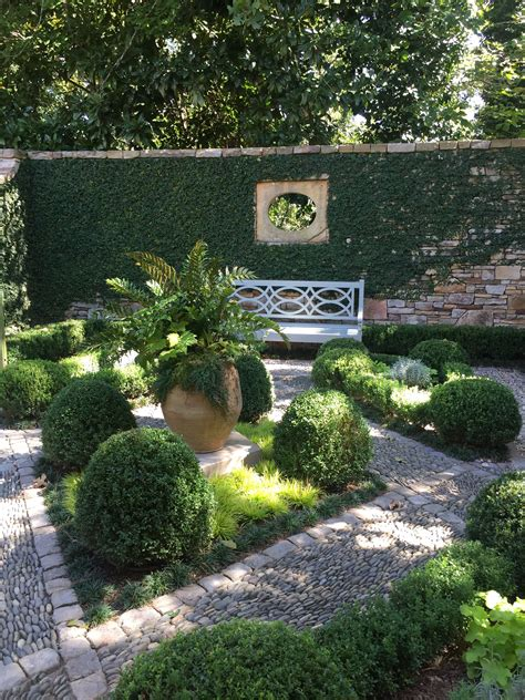 courtyard landscape walled courtyard garden with boxwood and fig vine by