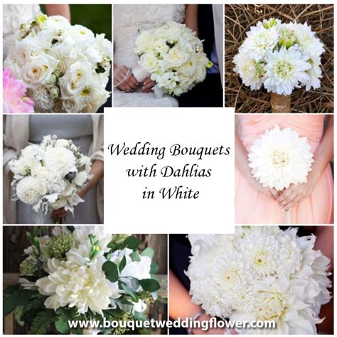 And White Flower Bouquet For Wedding by Bouquet Wedding Flower Bouquets And Wedding Flowers