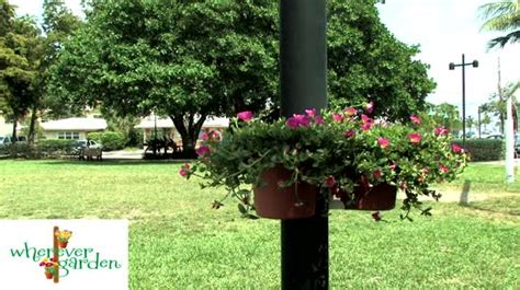 wherever garden flower and plant hanging system qvc com