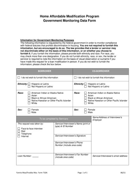 Government Monitoring Form - Fill Online, Printable