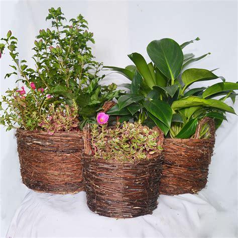 Handmade Plant Pots - garden pots caioffer rattan flower pots garden decoration
