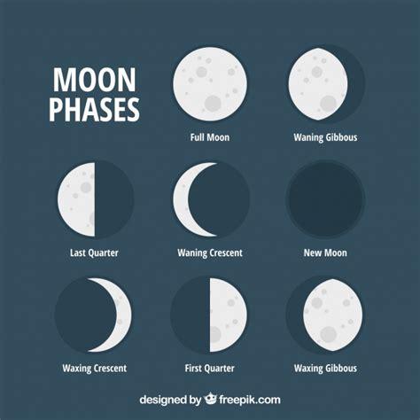 Lunar Set set de fases lunares planas descargar vectores gratis