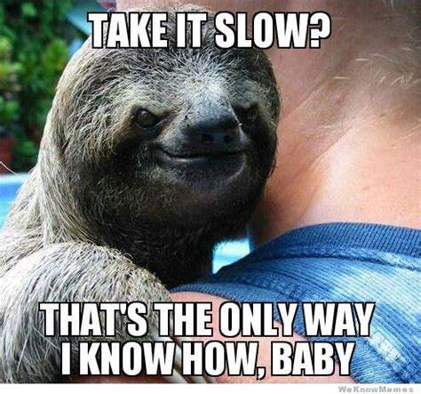 Sloth Meme Images - 30 greatest sloth memes gifs and comics weknowmemes