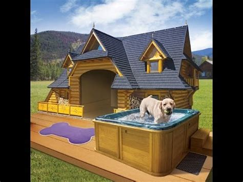 awesome dog house ideas diy dogloo dog house heater doovi