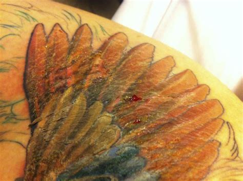 tattoo cracking how to stop new tattoos from drying out