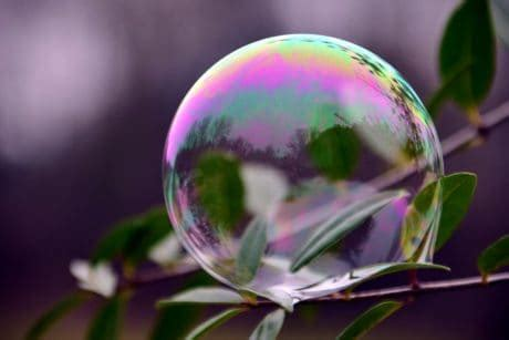 sphere pattern in nature wallpapers free images public domain images