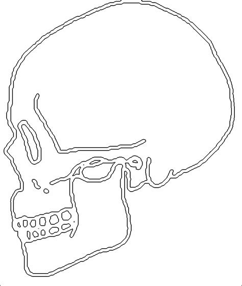 human skull coloring page halloween coloring sheets human skull drawing az