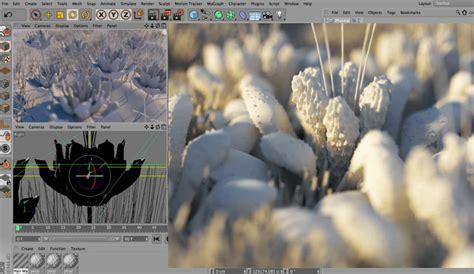 tutorial fotografia macro tutorial realizzare foto macro in cinema 4d