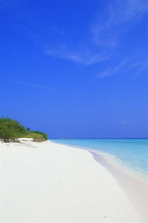 paesaggio spiaggia incontaminata sabbia bianca natura