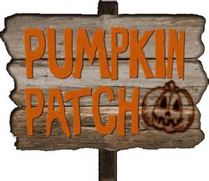 Pumpkin Patch Pumpkins Are On The Way Southern United Methodist