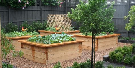 kitchen garden design ideas vegetable gardens inspiration kitchen farmer australia