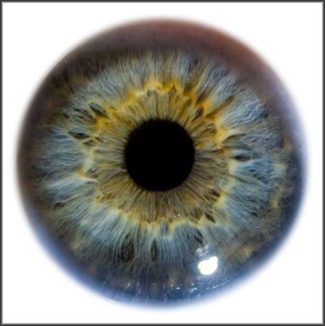 hd eye pattern iris eye macro stock by zpyder on deviantart