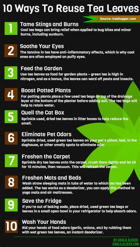 10 ways to reuse tea leaves visual ly