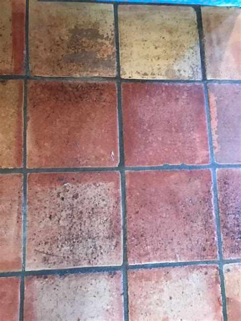 best sealer for terracotta floor tiles stain protection