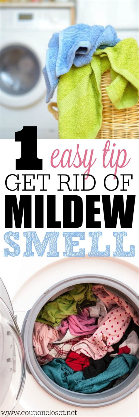 Some Ideas For How To Get Musty Smell Out Of House To Consider