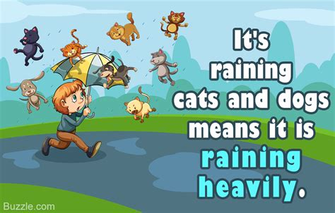 raining cats and dogs meaning true meaning and origin of the idiom it s raining cats and dogs