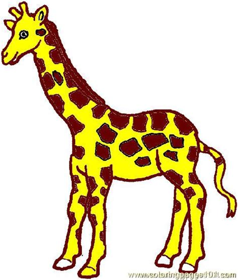 printable giraffe images coloring pages giraffe coloring page 03 animals gt giraffe
