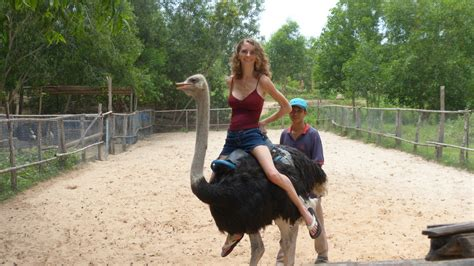Jen riding an ostrich   Pearce On Earth