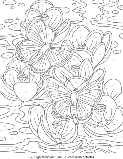 color by number butterfly coloring page creative haven butterflies color by number coloring book
