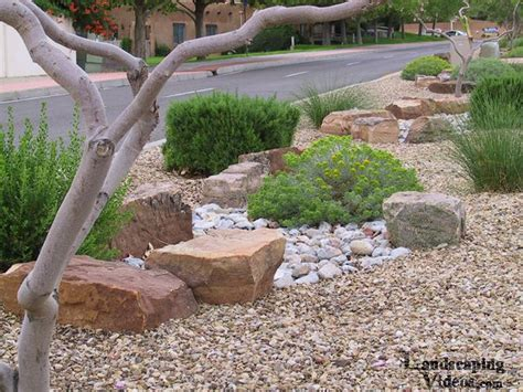 Large Decorative Stones For Gardens by Xeriscaping Low Water Use Planting Display In New Mexico