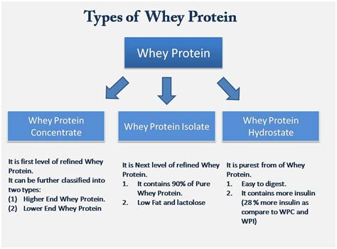 types of updated guide on whey protein khelmart wordpress blog